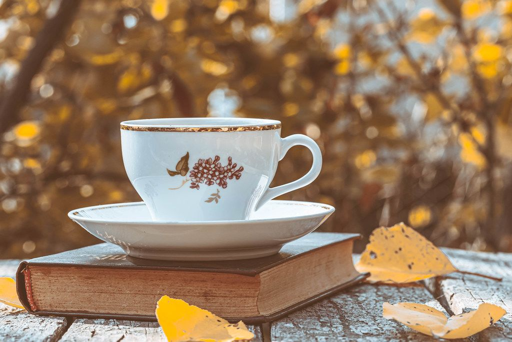 a cup of tea sitting on a book in the foreground of autumn leaves